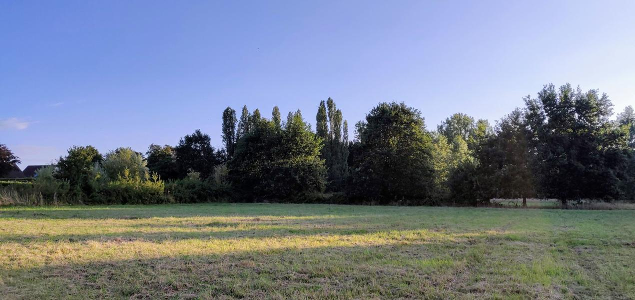 The valley near the Eetgoed (Z): in Flemish fields #2
