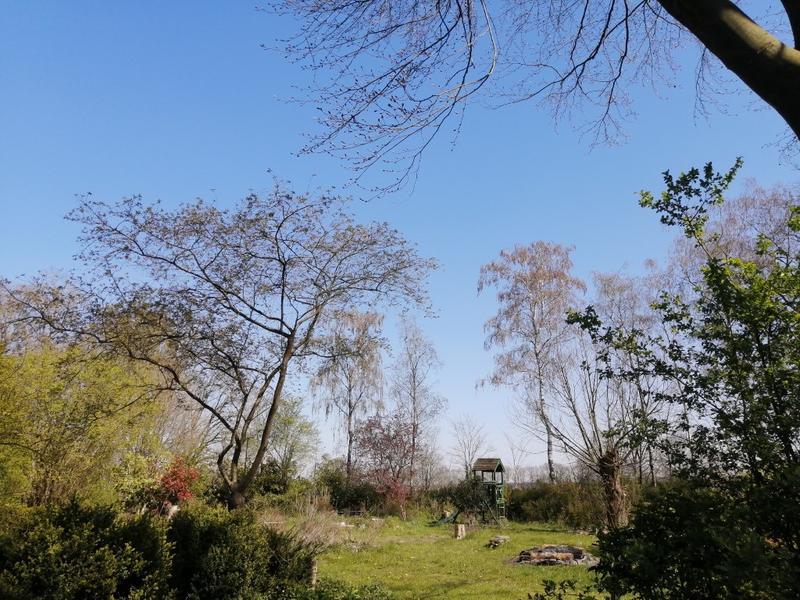 Offgrid - Ecobobo on the edge of the Loonse- en Drunense Duinen (TT) nature park #9