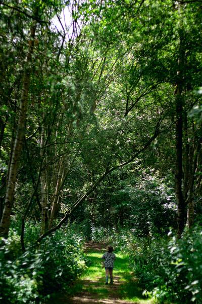 Aan de bosrand, gezellig mini camping Westenenk #7