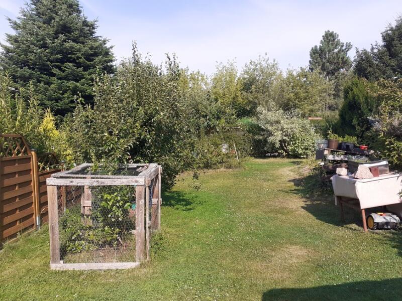 Garten am Waldrand in Wandergebiet Dippoldiswalder Heide/Wilisch #1