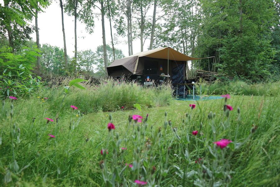 Tent staat klaar. Privé kamperen in hartje Vechtdal #6