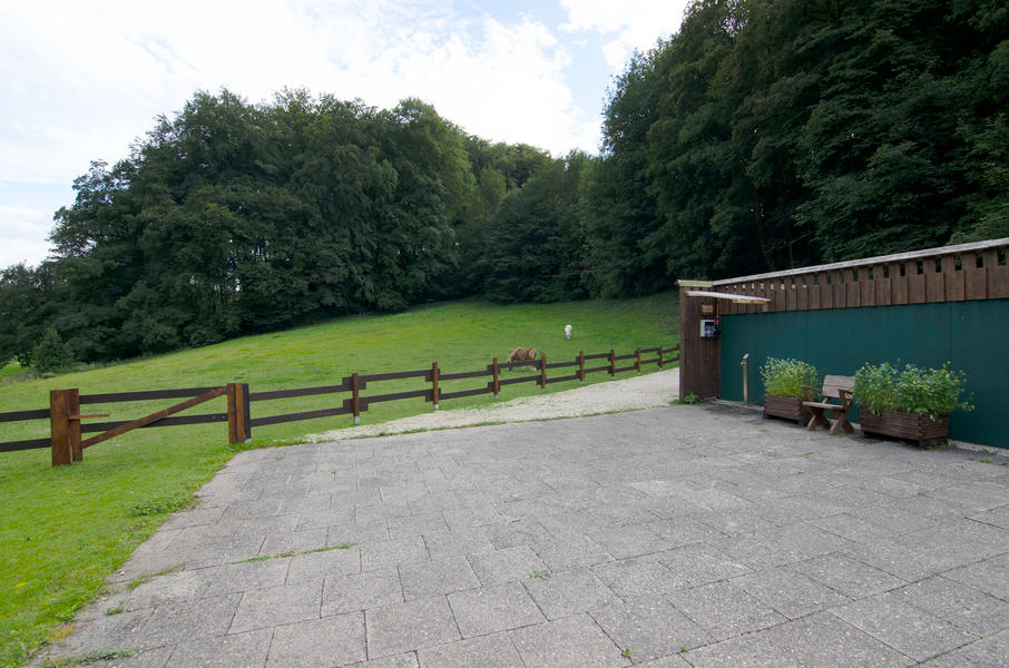 """Nature campsite """"Am Naturschutzgebiet"""" #3"""