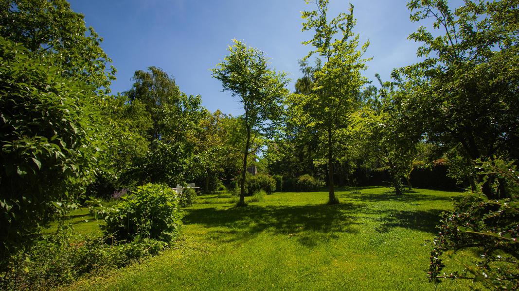 Relax @ our quiet Feng Shui orientated garden #6