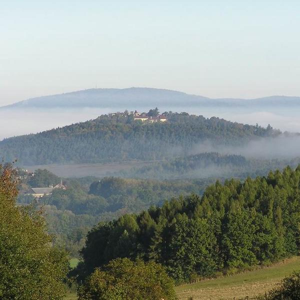 Enjoy the nature of the Bohemian forest #4