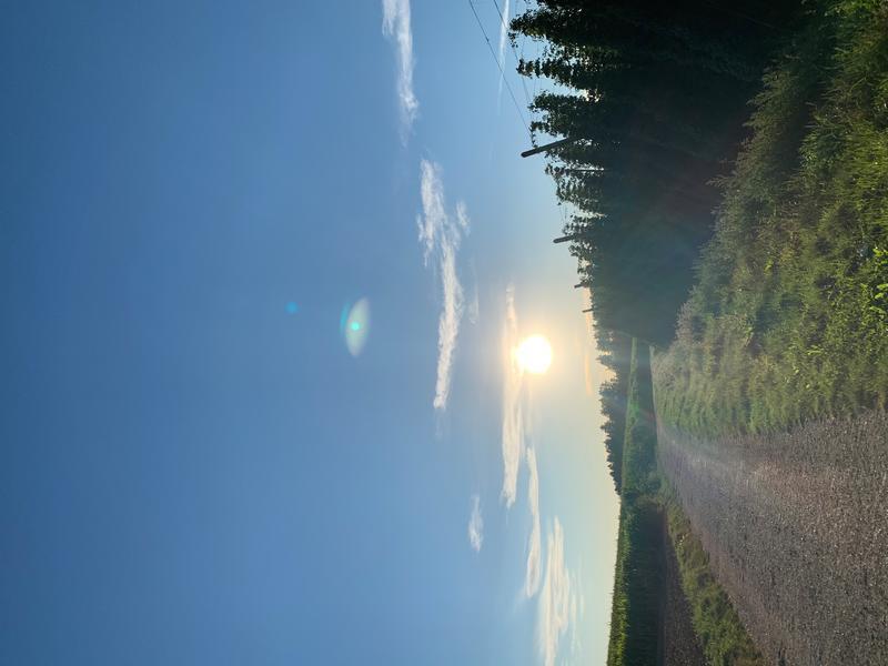Rural quiet idyll in the Hallertau #4