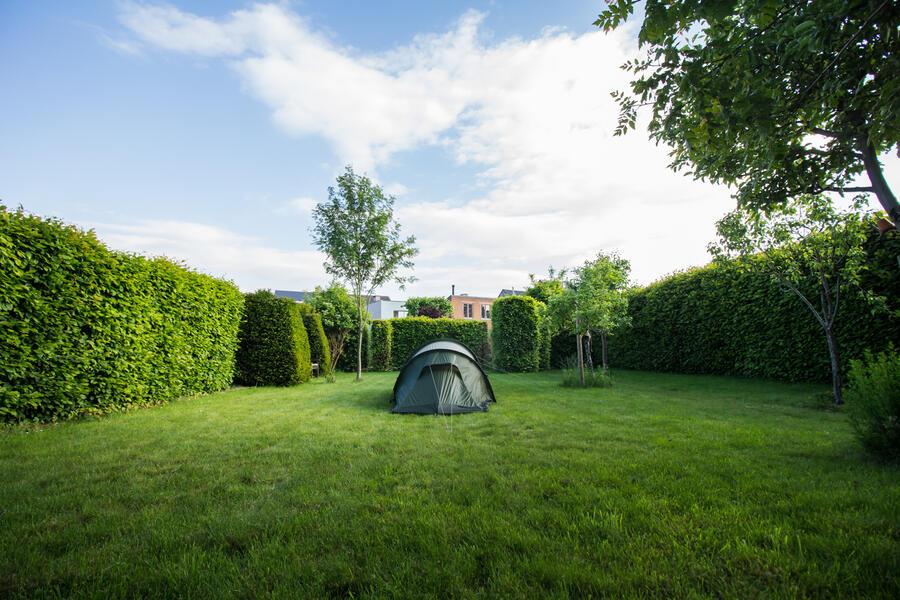 Vledermuis's camping