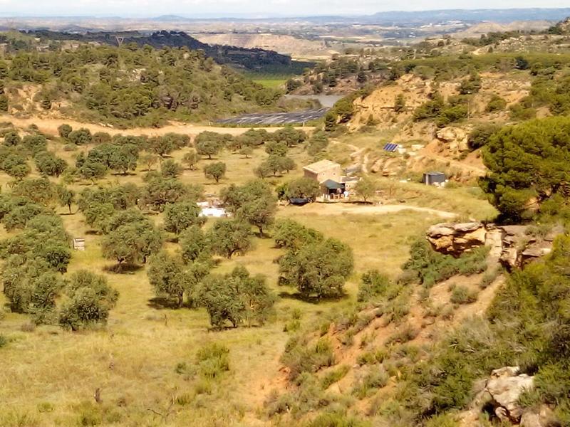 Finca La Solucion Bamping Off the Grid in Rural Spain #1