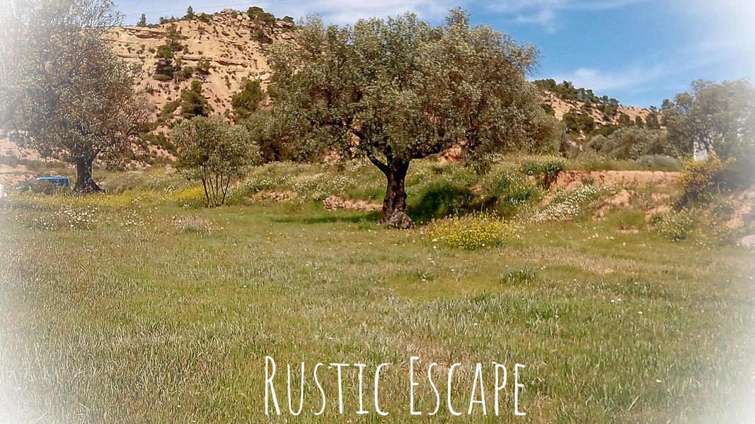 Finca La Solucion Bamping Off the Grid in Rural Spain #3