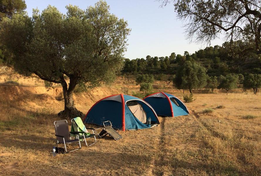 Finca La Solucion Bamping Off the Grid in Rural Spain #5