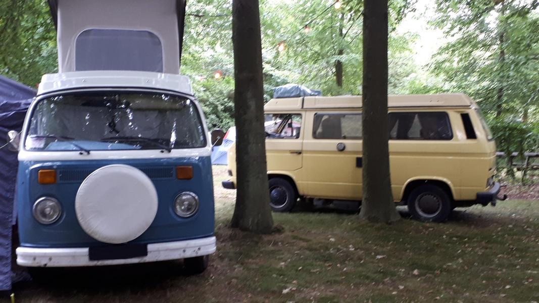 Tomorrowland Camping Garden #11