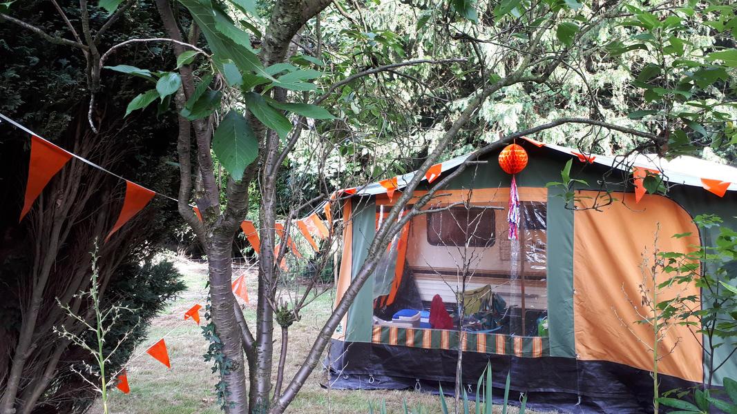 Tomorrowland Camping Garden #9