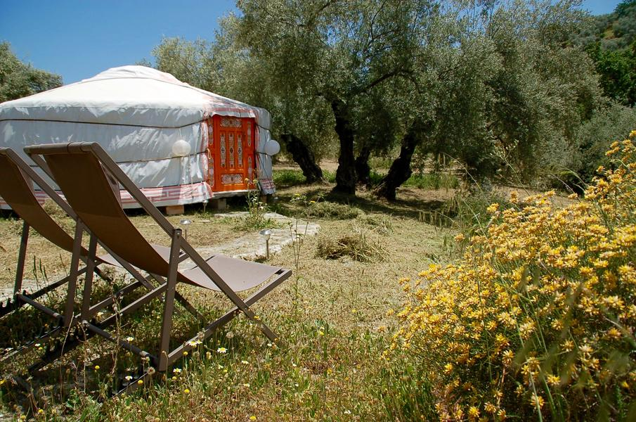 Glamping in the Golden Valley #1