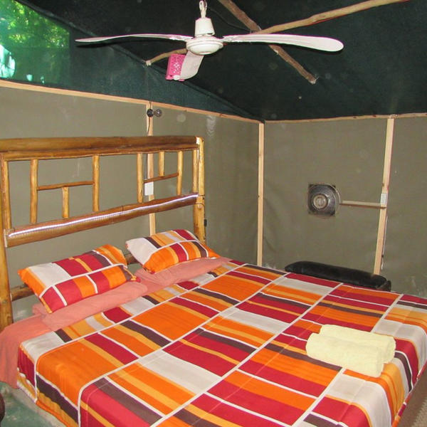 4 bed family bushtent with open shower. Watch out for Tarzan. #2