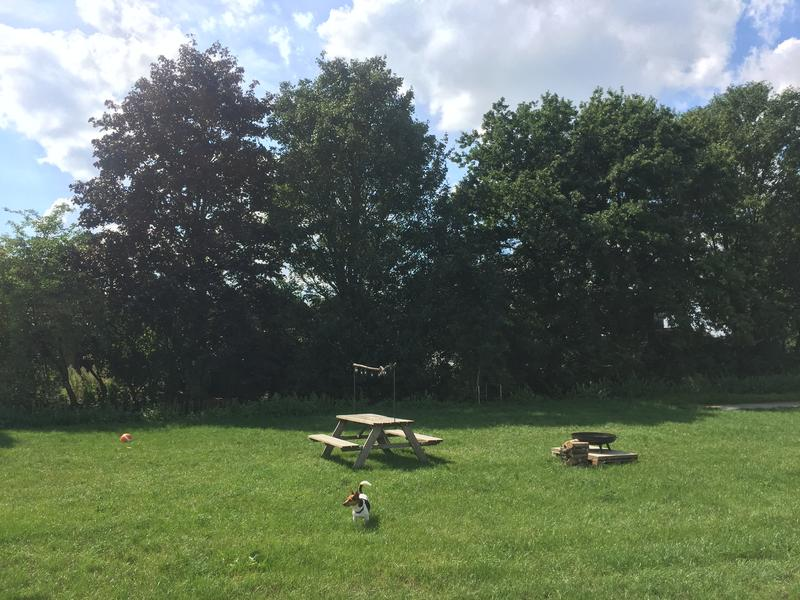 Fijne kampeerplek in het weiland  (1) #1