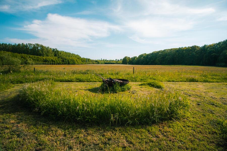 Idyllisches Camping in der Nähe von Wald und wunderschönem 'Pajottenland' #3