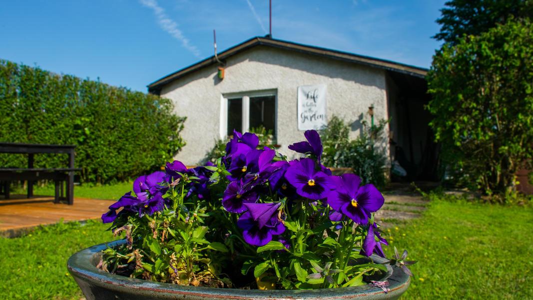 Quiet place in adventure garden in Mullerthal. #6