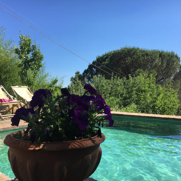 Glamping in one of the most beautiful areas of Tuscany #4