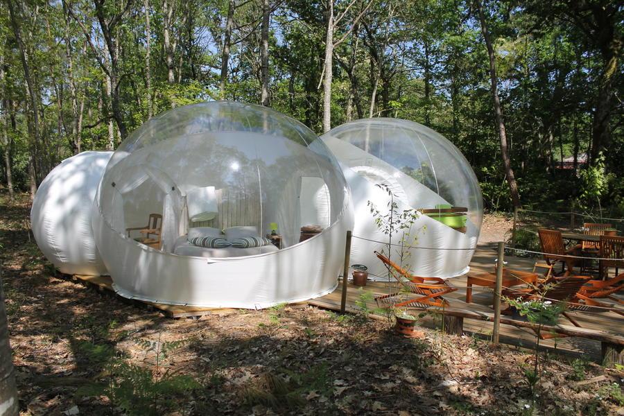 La bulle des chênes, double, familiale, transparente. #1