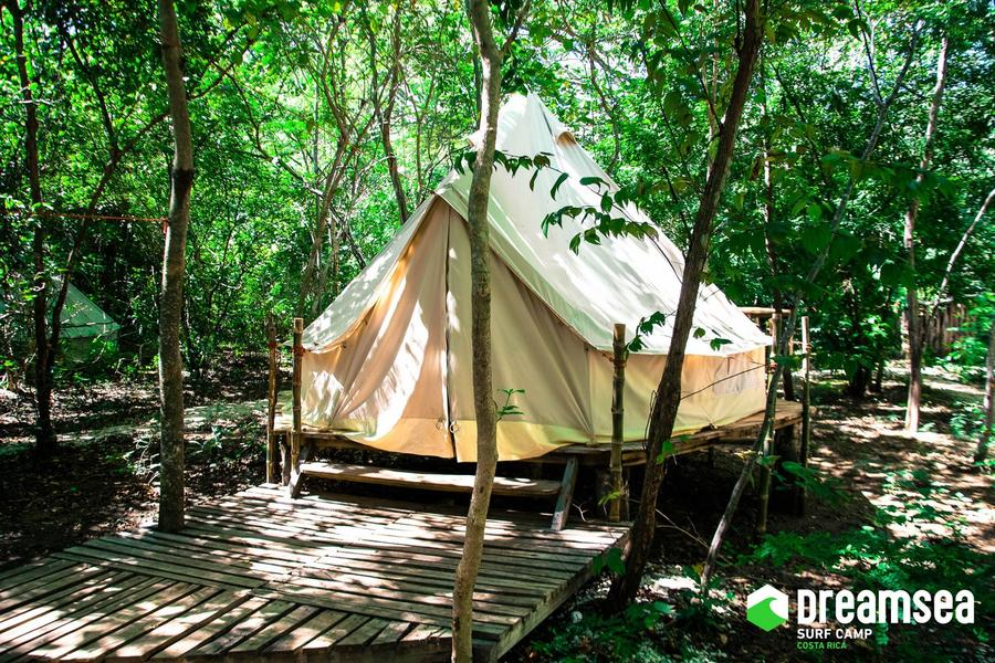 A Seamless Marriage Of Glamping & Surfing! #1