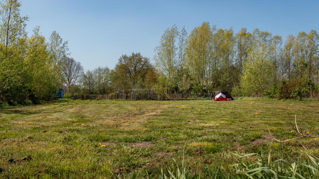 Grünland umgeben von Büschen a #9