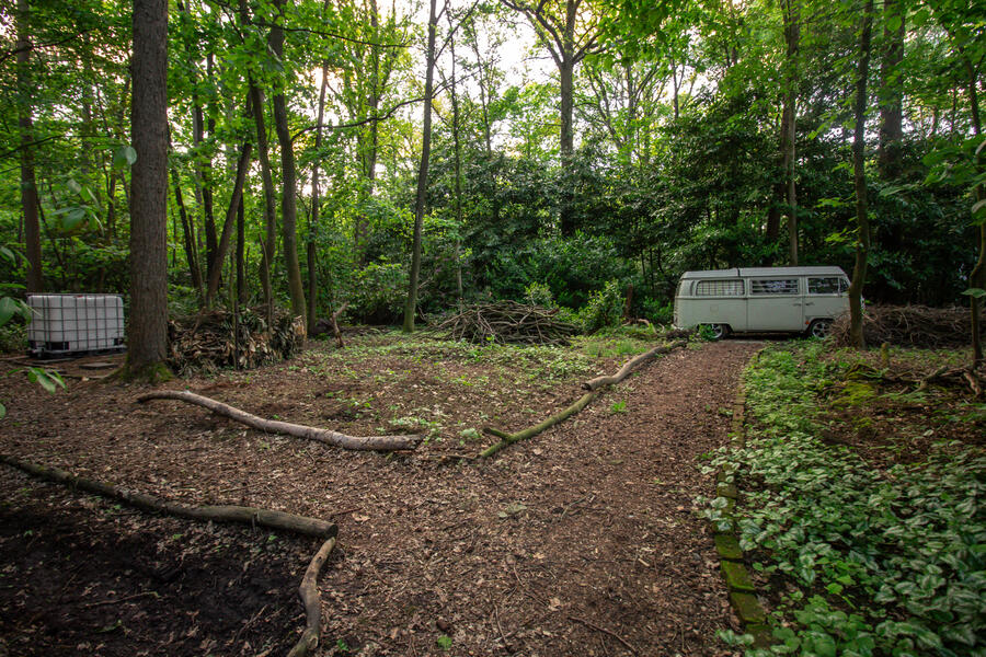 Een klein huisje met kampeerplek in het midden van het bos. #1