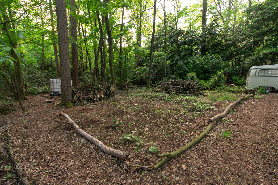 Een klein huisje met kampeerplek in het midden van het bos. #2