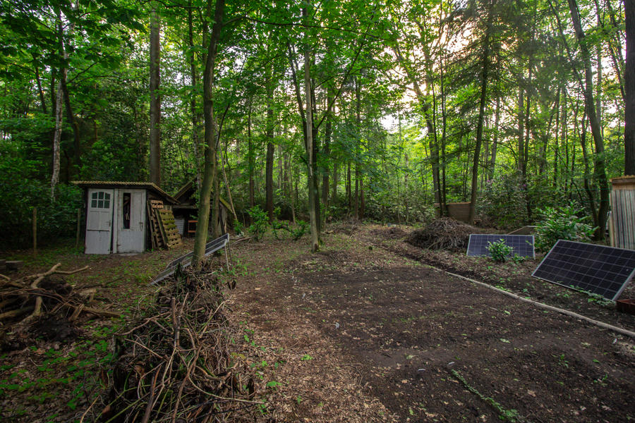 Een klein huisje met kampeerplek in het midden van het bos. #3