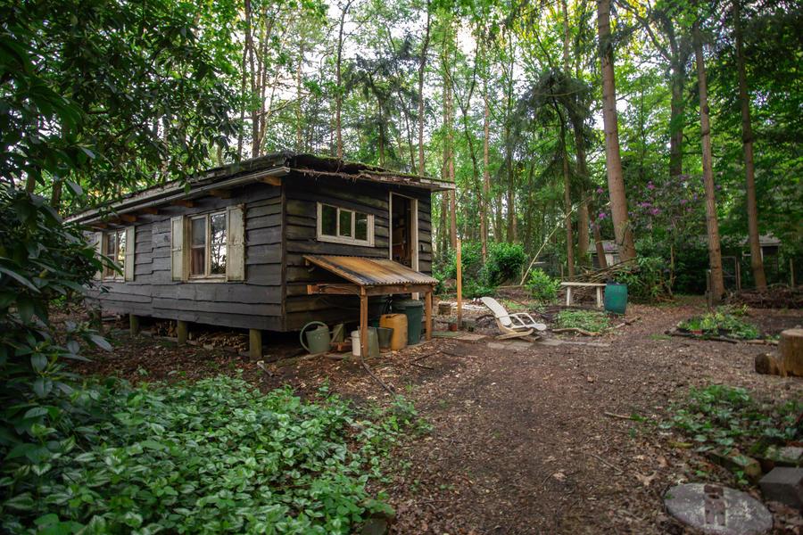 Een klein huisje met kampeerplek in het midden van het bos. #5