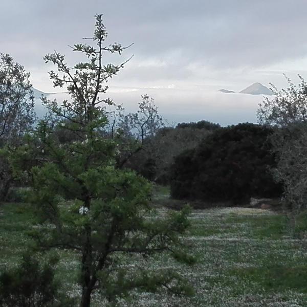 Shambala Sardinia Relax in Nature #2
