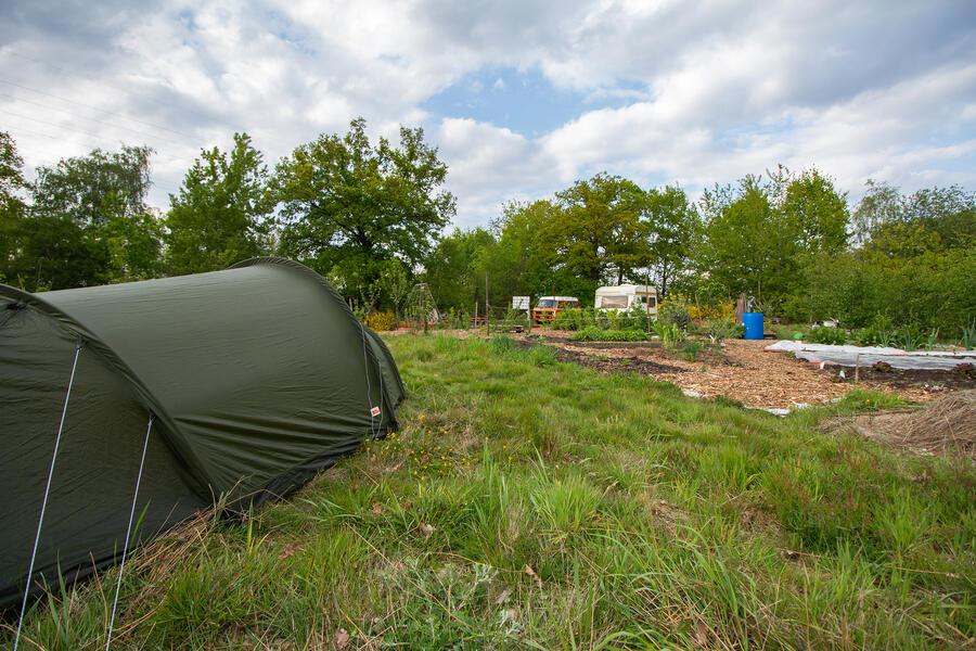 Gemeinschaftsgarten 'Warmoes' in der Nähe der De Molse Seen #1