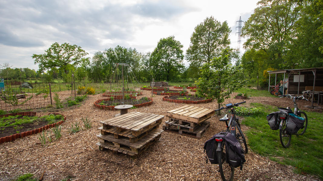 Community garden 'Warmoes' near De Molse lakes #5