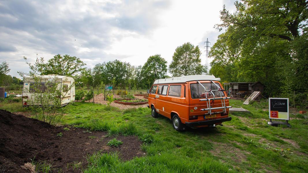 Gemeinschaftsgarten 'Warmoes' in der Nähe der De Molse Seen #6