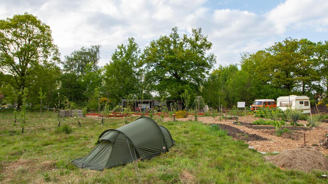 Gemeinschaftsgarten 'Warmoes' in der Nähe der De Molse Seen #8