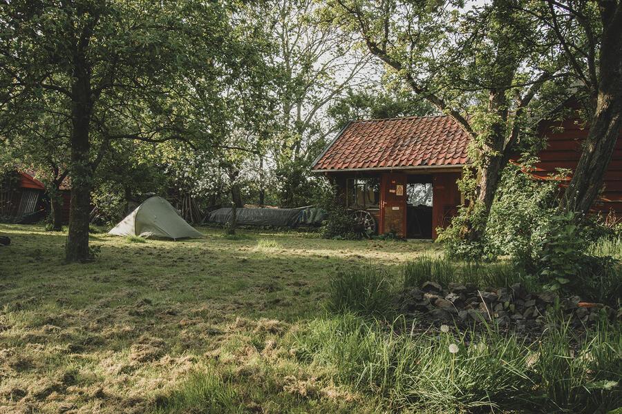 Öko-Camping in der Nähe von Wad und DarkSky-Park Lauwersoog #1