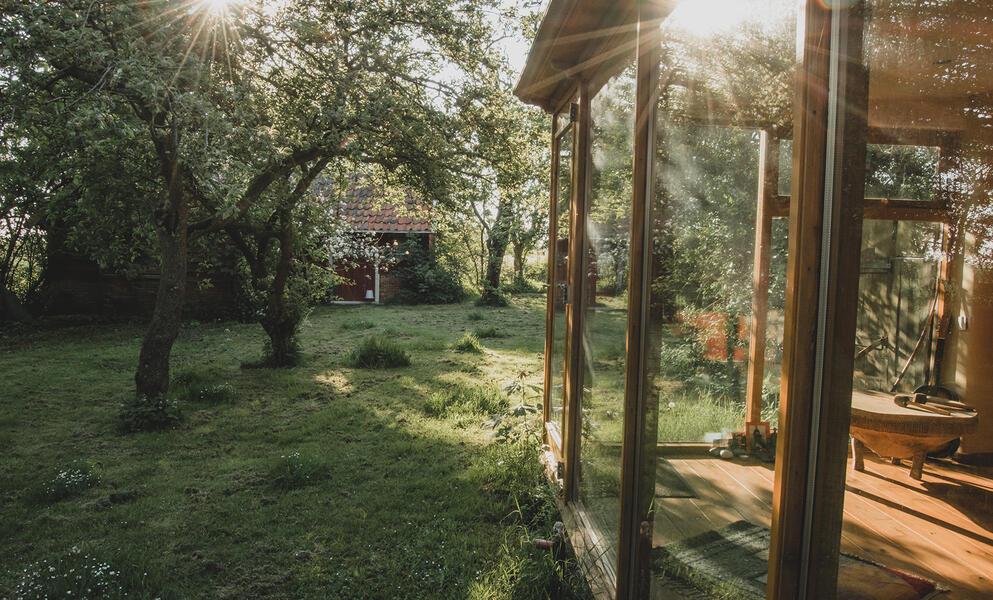 Öko-Camping in der Nähe von Wad und DarkSky-Park Lauwersoog #3