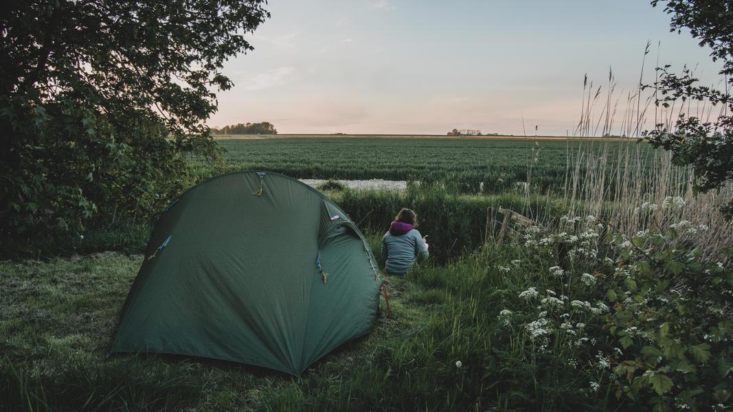 Öko-Camping in der Nähe von Wad und DarkSky-Park Lauwersoog #4