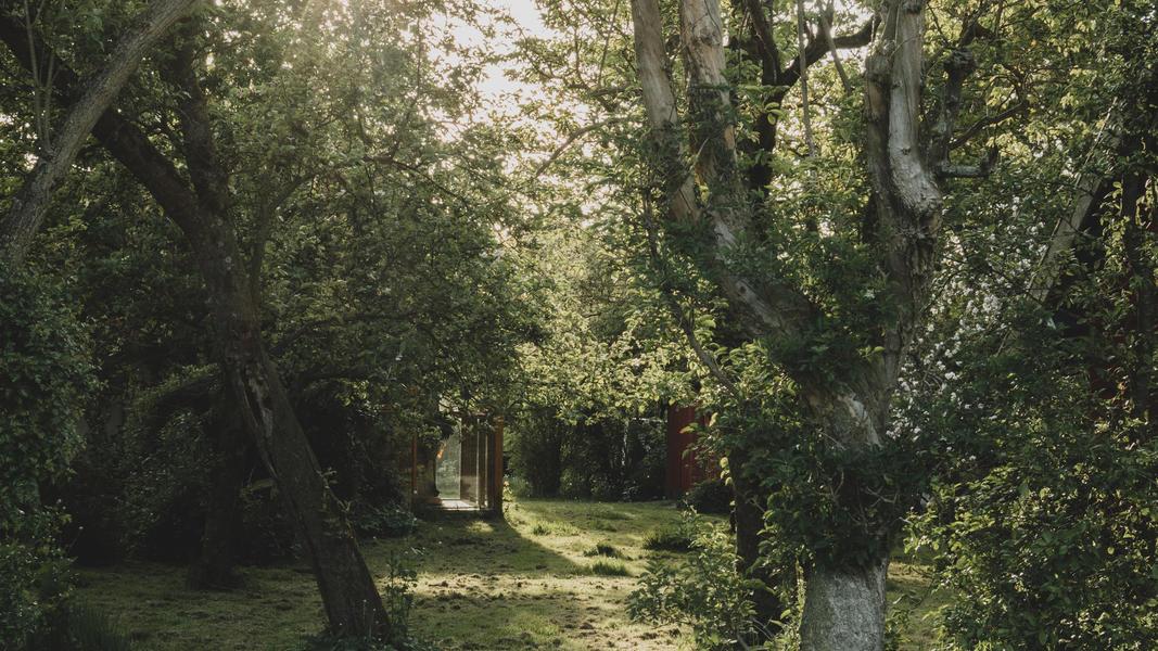 Öko-Camping in der Nähe von Wad und DarkSky-Park Lauwersoog #7