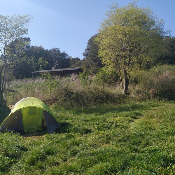 Vilabona Wildlife, near Mount Collsacabra #5