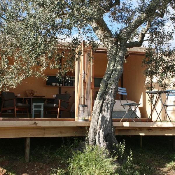 Modern Choupana Abilardo in Alentejo Region, Portugal #2