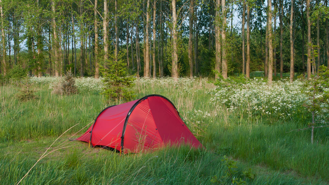 """Veldzicht"" -  wild camping on a large back yard #4"