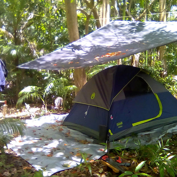 Tropical Forest Camping in Barbados #2