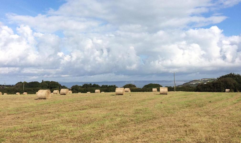 Springfield Farm in the Pembrokeshire Coast National Park #1