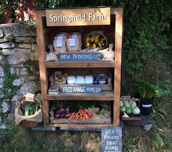Springfield Farm in the Pembrokeshire Coast National Park #3
