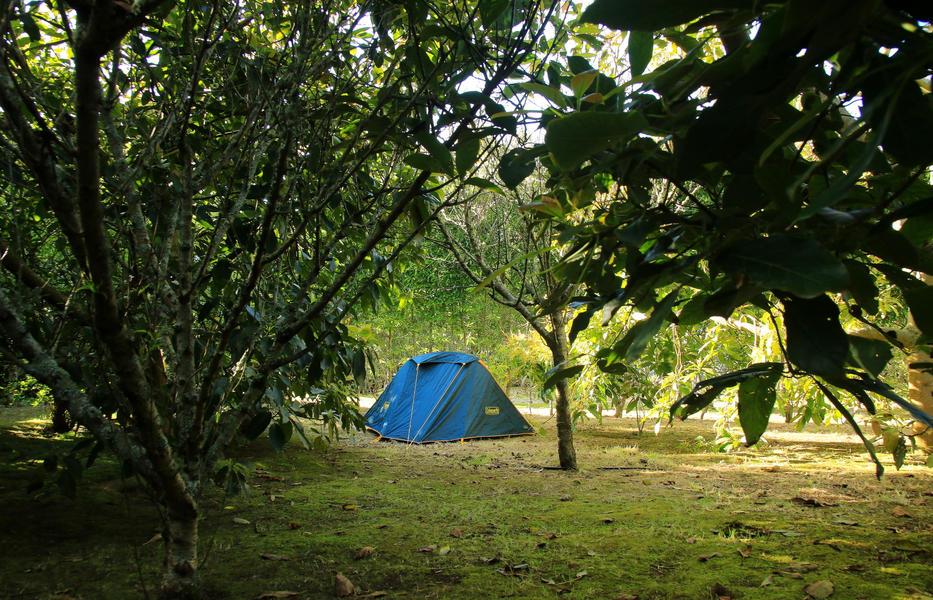 Quinta das Laranjeiras #5
