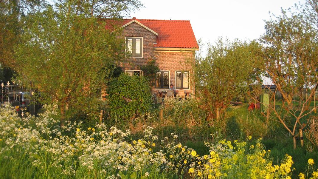 Amsterdam Rural North (Broek in Waterland) #2
