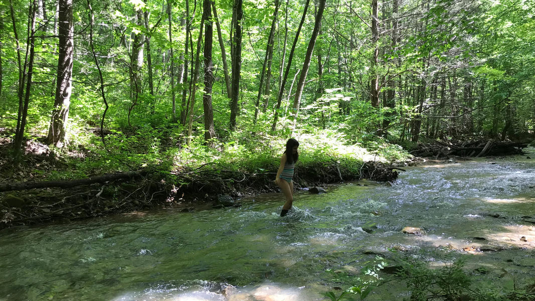 Dip your toes into Little Catawba Creek #2