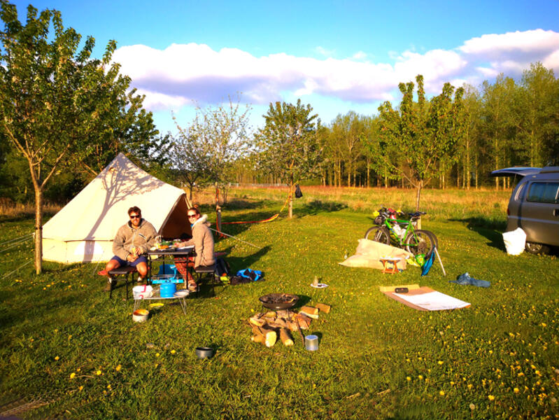 Camping in food forestry #1