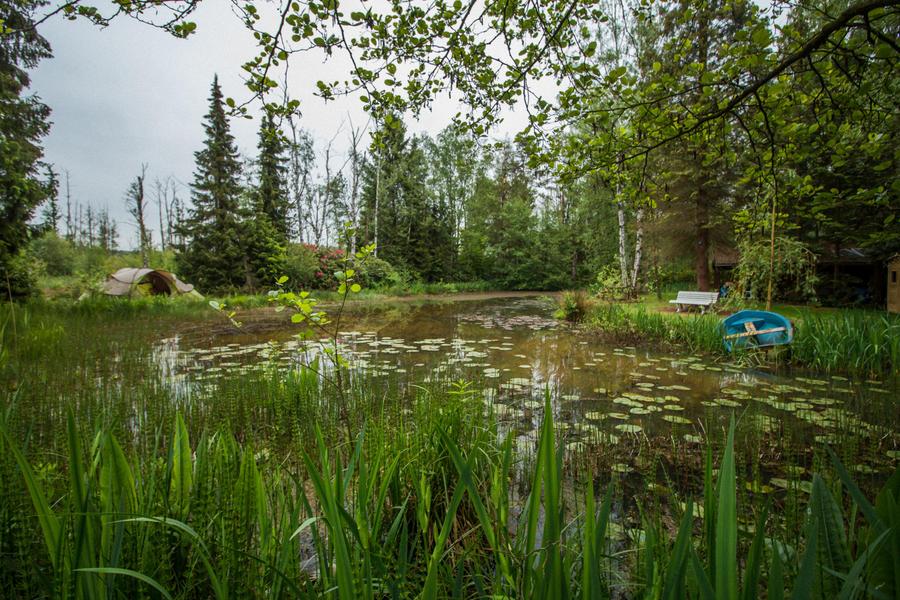 Nature campspace #1