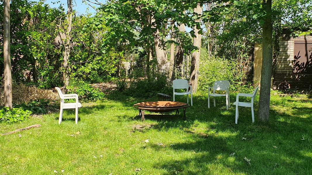 Tomorrowland garden Boom #8