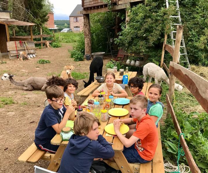Heerlijke Alpaca campsite in een rustige omgeving. #8